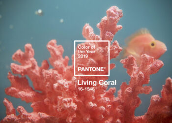 LE « LIVING CORAL » ELU COULEUR 2019